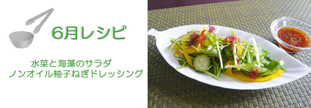 水菜と海藻のサラダ ノンオイル柚子ねぎドレッシング