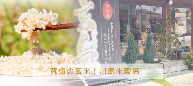 究極の玄米!静岡県の川島米穀店へお話を聞いてきました